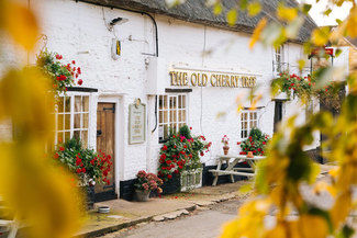 The Old Cherry Tree, Great Houghton Image